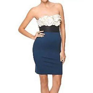 BCBG CARBON body con Strapless Dress - 10